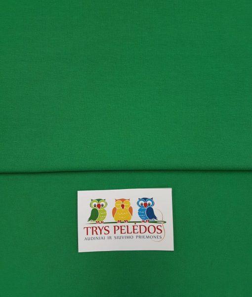 Plonas trikotažas, jersis Žalias