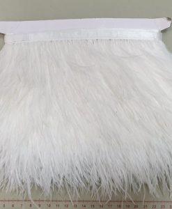 Juosta su natūraliomis stručio plunksnom, balta, 10 cm
