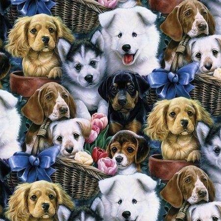 Kilpinis, skaitmeninės spaudos trikotažas Šuniukai